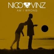 Am I Wrong  (NICO & VINZ) - Backing Track