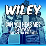 Can You Hear Me (Ayayaya) (WILEY Ft. SKEPTA & MS D) - Backing Track