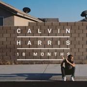 Feel So Close  (CALVIN HARRIS) - Backing Track