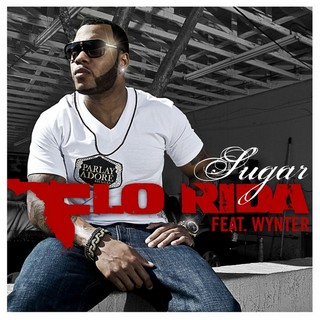 Sugar (FLO RIDA Ft. WYNTER) - Backing Track